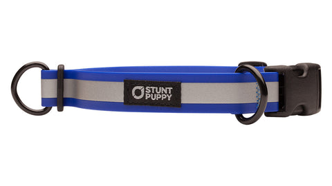 Go Dog Glo™ Dry Collar™ - Royal Reflective