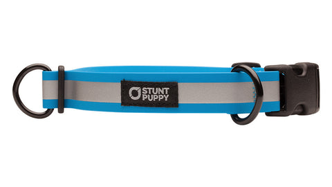Go Dog Glo™ Dry Collar™ - Ocean Reflective