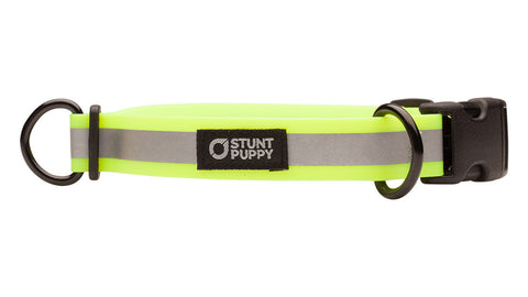 Go Dog Glo™ Dry Collar™ - Yellow Reflective