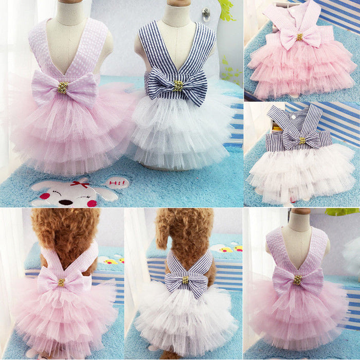 Summer Dog Lace Tulle Dress
