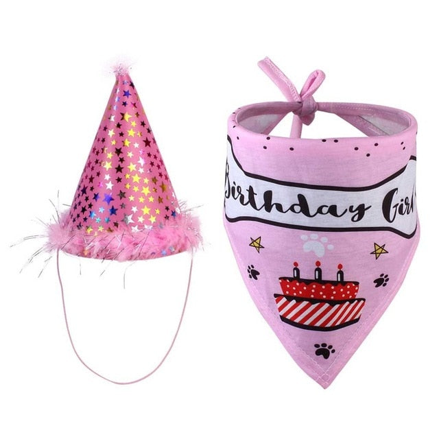 Cat Dog Party Headwear Hats And Bibs For Pet