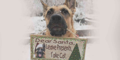 dog holding message card to Santa