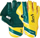 Pro 3.0 WicketKeeping Gloves