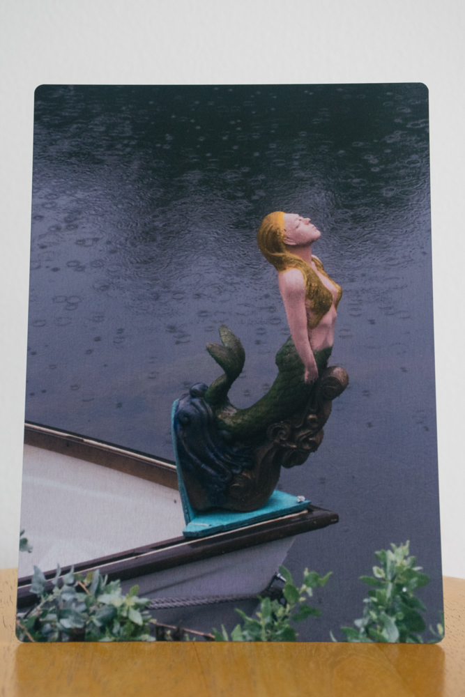 Venice Mermaid 5x7 metal photo