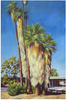 Palm Oasis Oil Painting