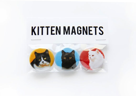Kitten Magnet Set