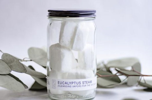 Eucalyptus Shower Melt