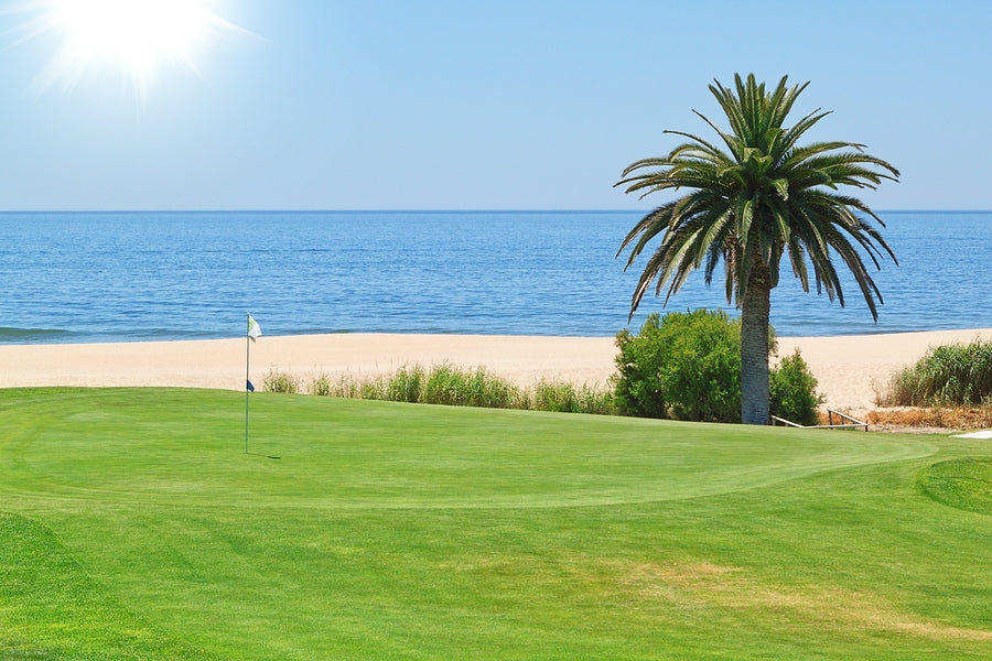 Beautiful View Of The Golf Course To The Sea And Palm Trees. Por