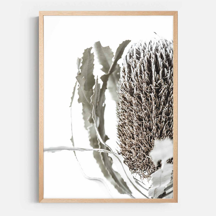 Print Workshop, Framed Print, Banksia Flora, Natural Australian Oak Box Frame, No White Border