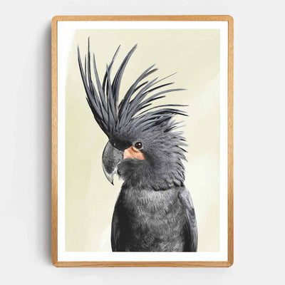 Black Beauty Cockatoo Print