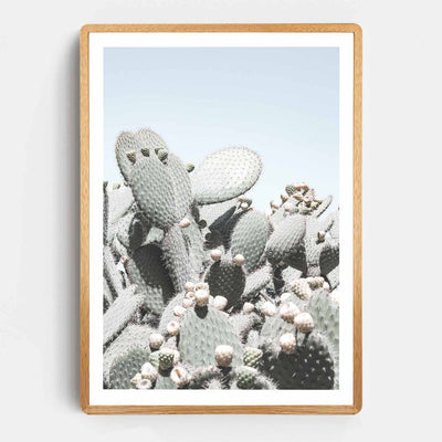 Print Workshop, Framed Print, Cactus View, Rounded Corner Natural Oak Box Frame, Light Oak Stain with White Border