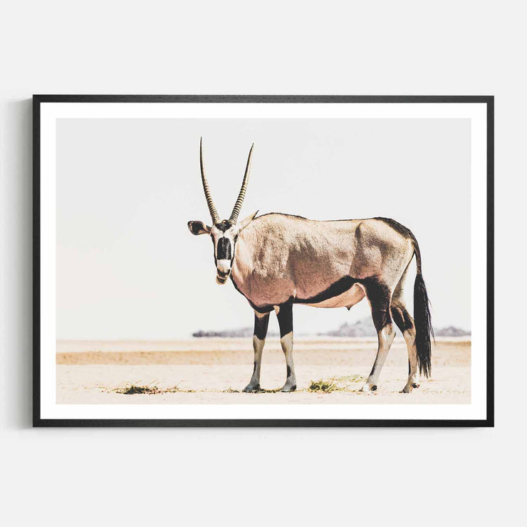 Print Workshop, Framed Print, Oryx, Natural Oak Box Frame, Black Coating with White Border