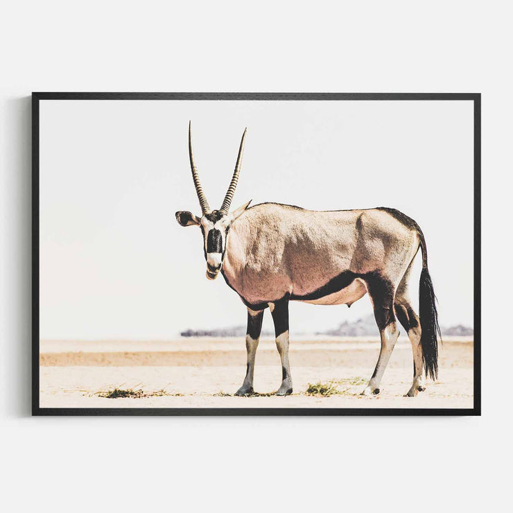 Print Workshop, Framed Print, Oryx, Natural Oak Box Frame, Black Coating, No White Border