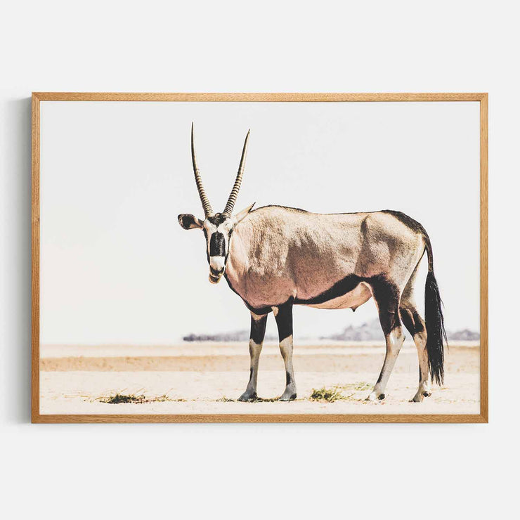 Print Workshop, Framed Print, Oryx, Natural Oak Box Frame, Light Oak Stain, No White Border