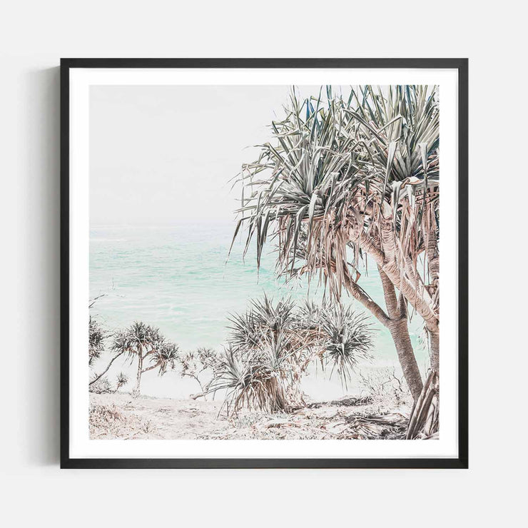 Print Workshop, Framed Print (Square Size), Pandanus, Box Frame, Black Smooth Coating with White Border