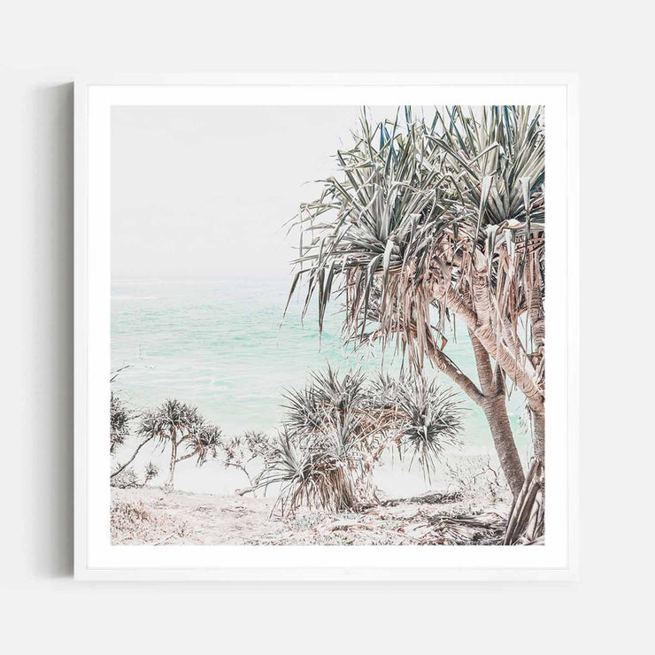 Print Workshop, Framed Print (Square Size), Pandanus, Box Frame, White Smooth Coating with White Border