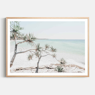 Print Workshop, Framed Print, Summer Beach View, Natural Australian Oak Box Frame with White Border