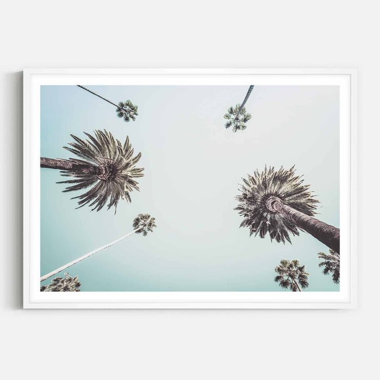 Print Workshop, Framed Print, Summer Palm Tree, Box Frame, White Smooth Coating with White Border