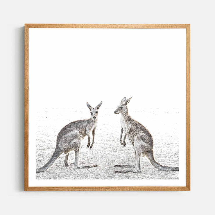 Print Workshop, Framed Print (Square Size), Two Beach Kangaroos, Natural Oak Box Frame, Light Oak Stain with White Border