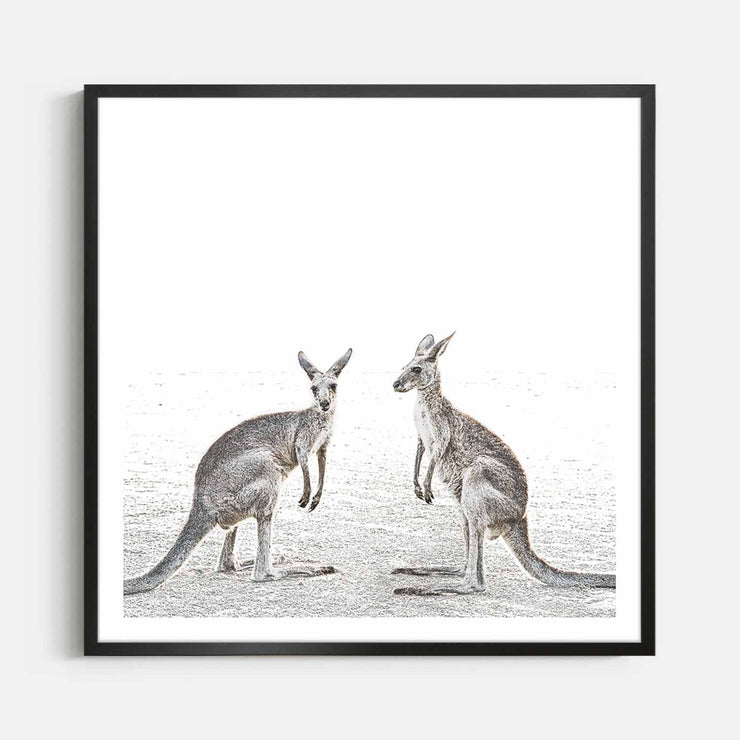 Print Workshop, Framed Print (Square Size), Two Beach Kangaroos, Box Frame, Black Smooth Coating with White Border