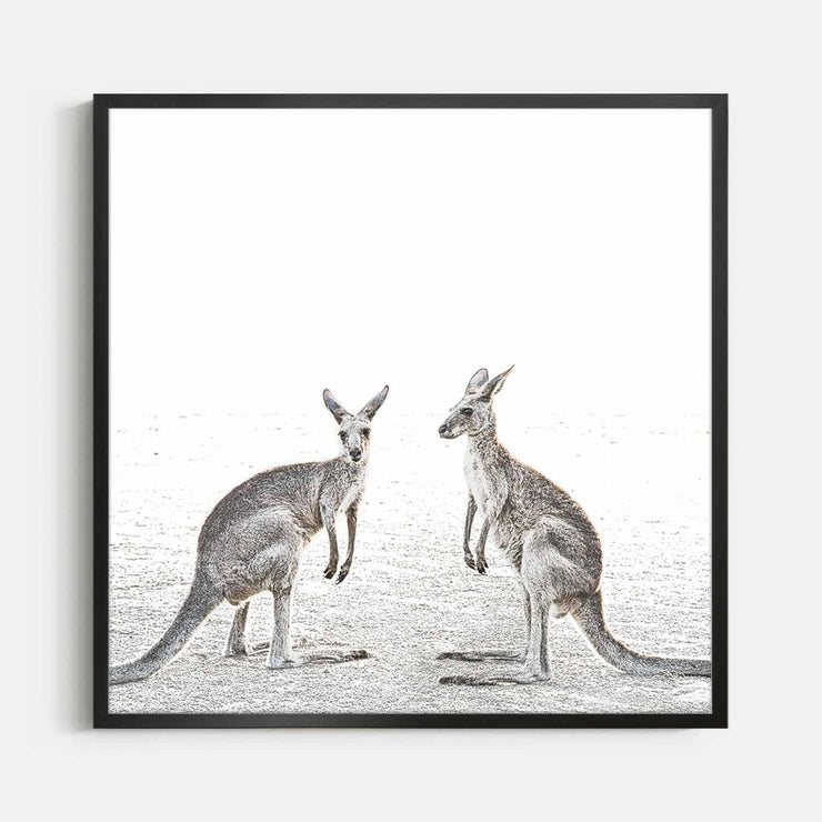 Print Workshop, Framed Print (Square Size), Two Beach Kangaroos, Box Frame, Black Smooth Coating, No White Border