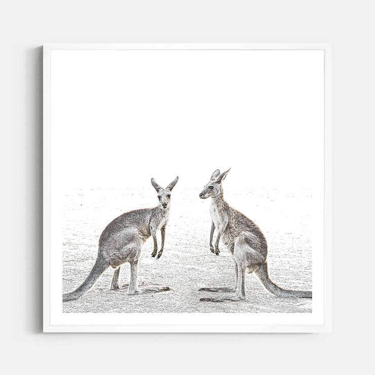 Print Workshop, Framed Print (Square Size), Two Beach Kangaroos, Box Frame, White Smooth Coating with White Border