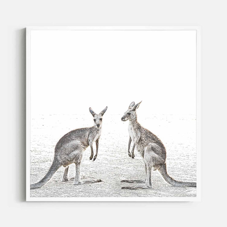 Print Workshop, Framed Print (Square Size), Two Beach Kangaroos, Box Frame, White Smooth Coating, No White Border