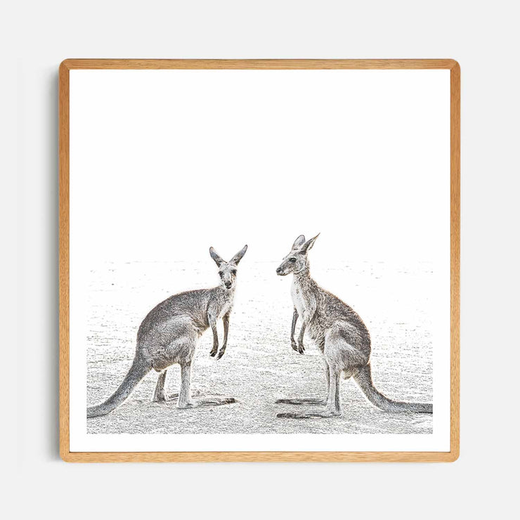 Print Workshop, Framed Print (Square Size), Two Beach Kangaroos, Rounded Corner Natural Oak Box Frame, Light Oak Stain with White Border