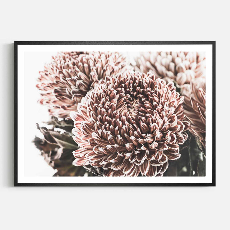 Print Workshop, Framed Print, Vintage Floral #2, Natural Oak Box Frame, Black Coating with White Border