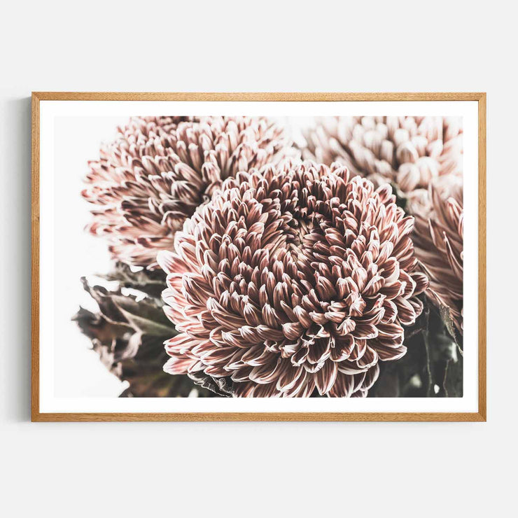 Print Workshop, Framed Print, Vintage Floral #2, Natural Oak Box Frame, Light Oak Stain with White Border