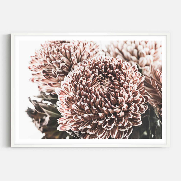 Print Workshop, Framed Print, Vintage Floral #2, Box Frame, White Smooth Coating with White Border