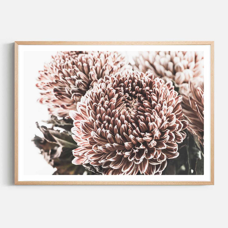Print Workshop, Framed Print, Vintage Floral #2, Natural Australian Oak Box Frame with White Border