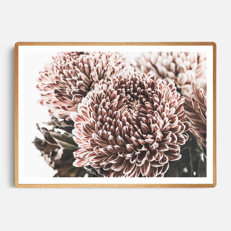 Print Workshop, Framed Print, Vintage Floral #2, Rounded Corner Natural Oak Box Frame, Light Oak Stain with White Border