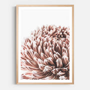 Print Workshop, Framed Print, Vintage Floral #3, Natural Australian Oak Box Frame with White Border