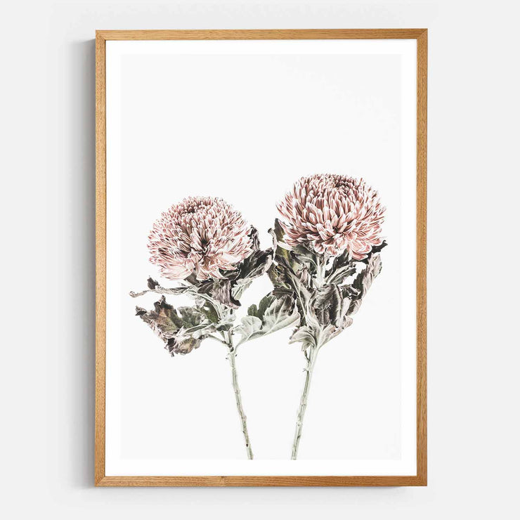 Print Workshop, Framed Print, Vintage Floral #6, Natural Oak Box Frame, Light Oak Stain with White Border