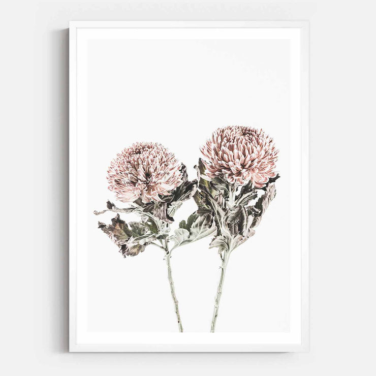 Print Workshop, Framed Print, Vintage Floral #6, Box Frame, White Smooth Coating with White Border