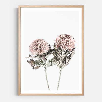 Print Workshop, Framed Print, Vintage Floral #6, Natural Australian Oak Box Frame with White Border