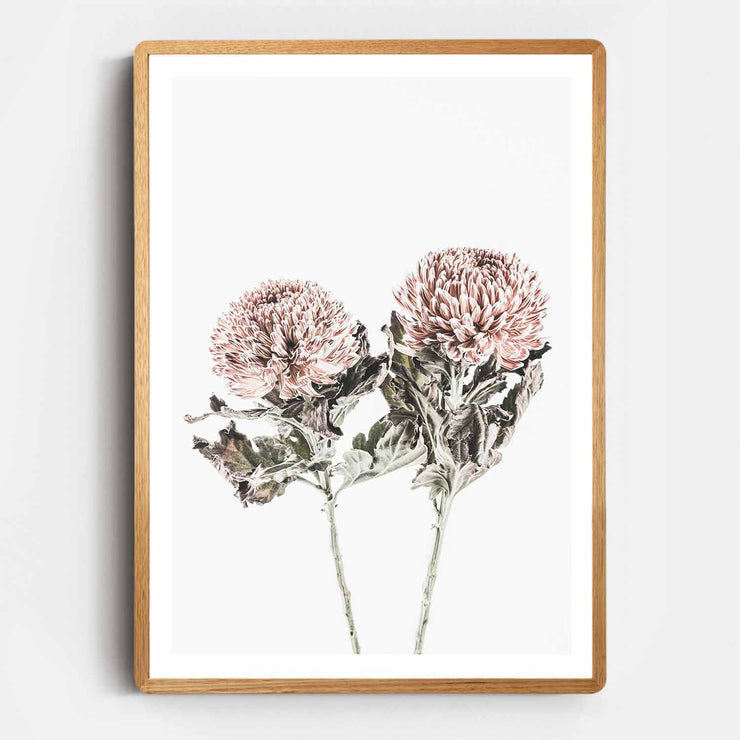 Print Workshop, Framed Print, Vintage Floral #6, Rounded Corner Natural Oak Box Frame, Light Oak Stain with White Border
