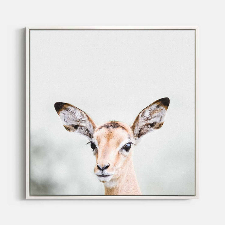 Print Workshop, Canvas Print (Square Size), Baby Deer, Floating Frame, White Smooth Coating