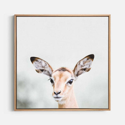 Print Workshop, Canvas Print (Square Size), Baby Deer, Natural Australian Oak Floating Frame