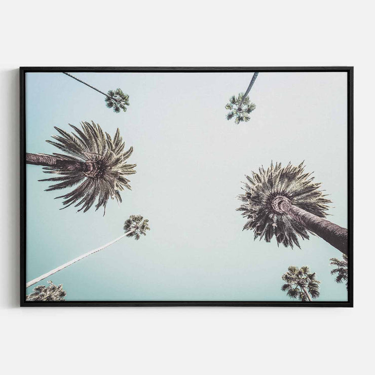 Print Workshop, Canvas Print, Summer Palm Tree, Natural Oak Floating Frame, Black Coating