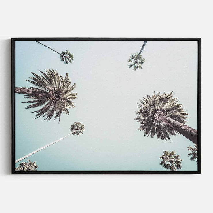 Print Workshop, Canvas Print, Summer Palm Tree, Floating Frame, Black Smooth Coating