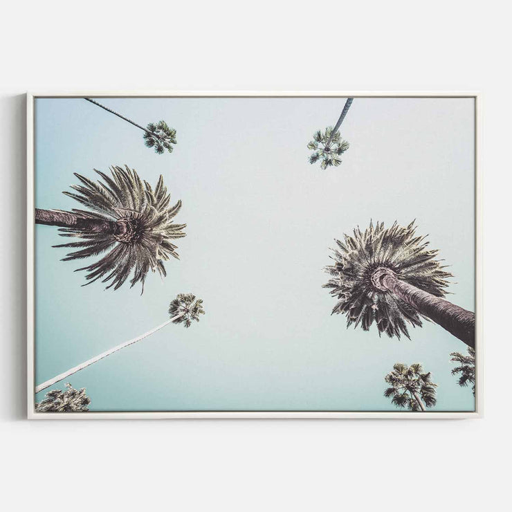 Print Workshop, Canvas Print, Summer Palm Tree, Floating Frame, White Smooth Coating