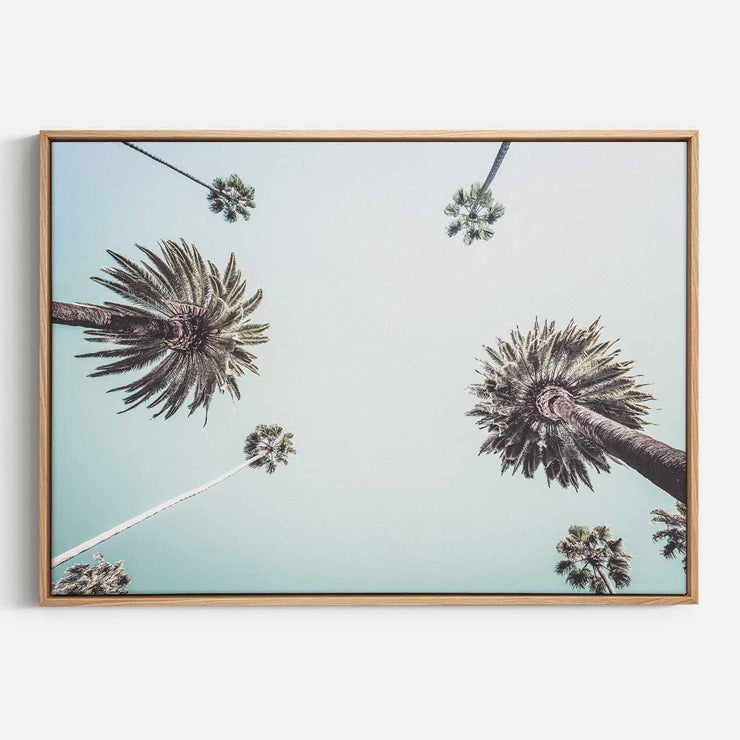 Print Workshop, Canvas Print, Summer Palm Tree, Natural Australian Oak Floating Frame