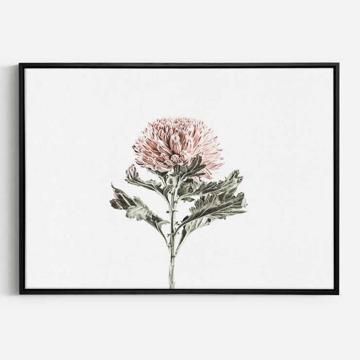 Print Workshop, Canvas Print, Vintage Floral #1, Natural Oak Floating Frame, Black Coating