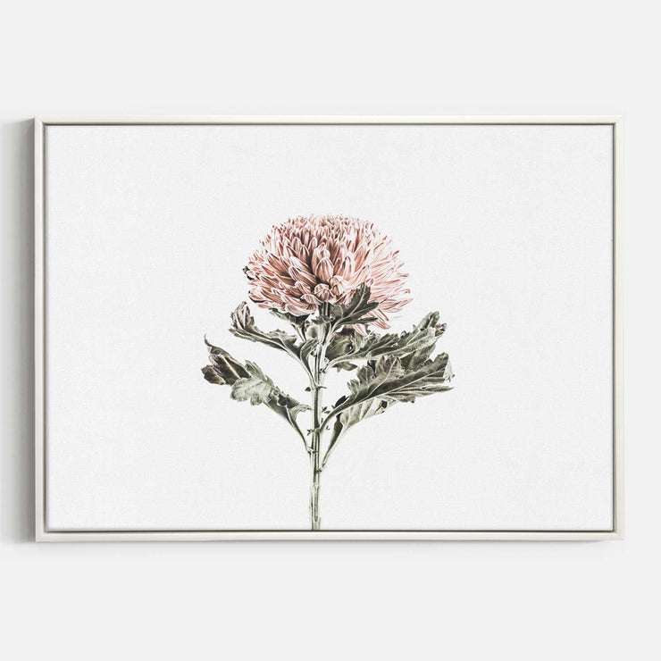 Print Workshop, Canvas Print, Vintage Floral #1, Floating Frame, White Smooth Coating