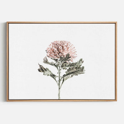 Print Workshop, Canvas Print, Vintage Floral #1, Natural Australian Oak Floating Frame
