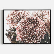 Print Workshop, Canvas Print, Vintage Floral #2, Natural Oak Floating Frame, Black Coating