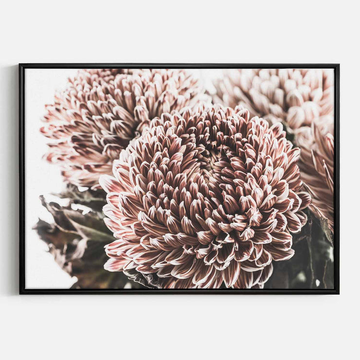 Print Workshop, Canvas Print, Vintage Floral #2, Floating Frame, Black Smooth Coating