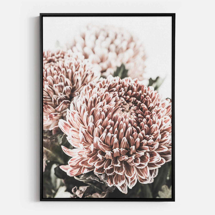 Print Workshop, Canvas Print, Vintage Floral #4, Natural Oak Floating Frame, Black Coating